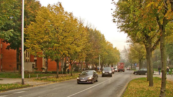 Glavna prometnica Staglišća - Hrgovići