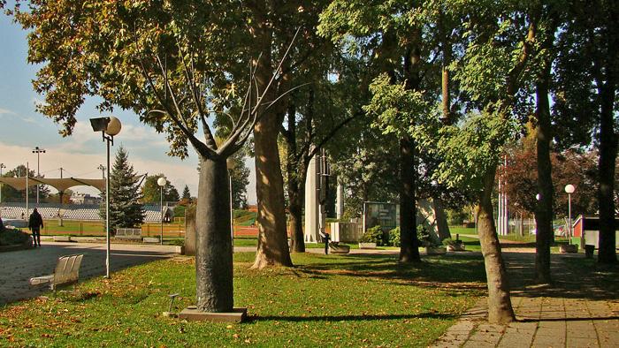 """Skulptura baobaba u parku uz plivalište """"Mladost"""" na Savi [GP 2013.]"""