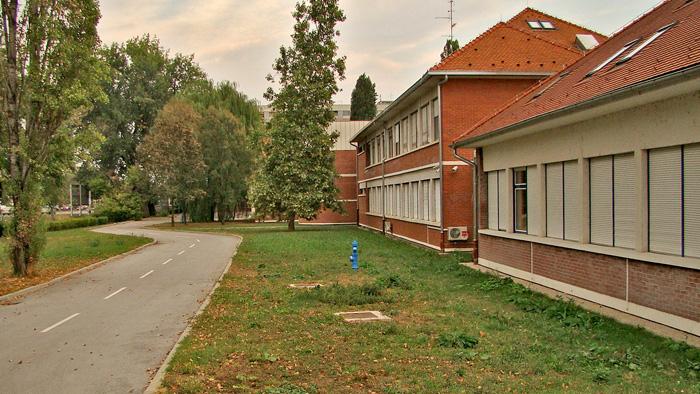 Osnovna škola u Bazjančevoj ulici [GP 2012.]