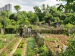 Vrtovi na Jarunu [VR 2013.]