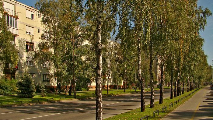 Bivša Moskovska ulica (sada Krapinska ulica) [GP 2013.]