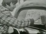 """Mladen Crnobrnja - Plik u kultnoj TV-seriji """"Kuda idu divlje svinje"""" iz 1971. godine"""