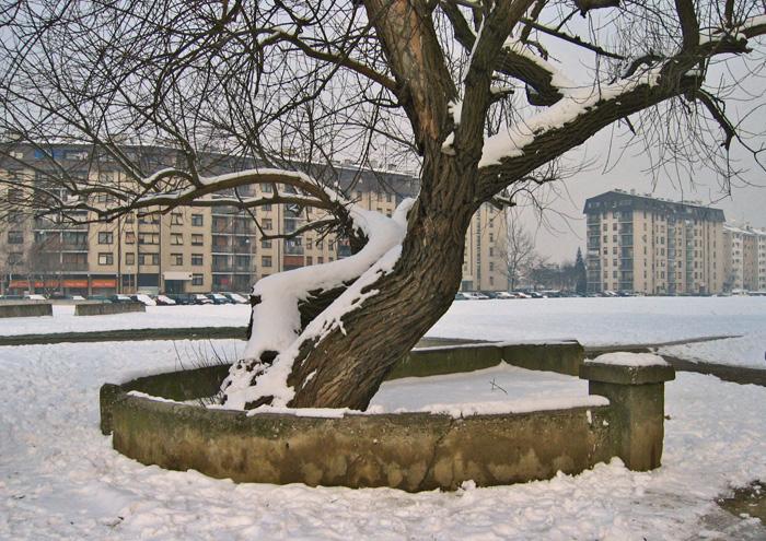 Ostaci zidića bivše mitnice na potoku Črnomercu na Horvaćanskoj cesti [GP 2005.]
