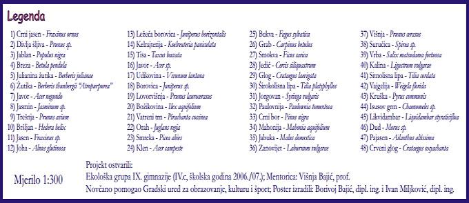 """Rad učenika gimnazije: """"Drveće i grmlje naše škole"""" (Legenda) [IR 2015.]"""